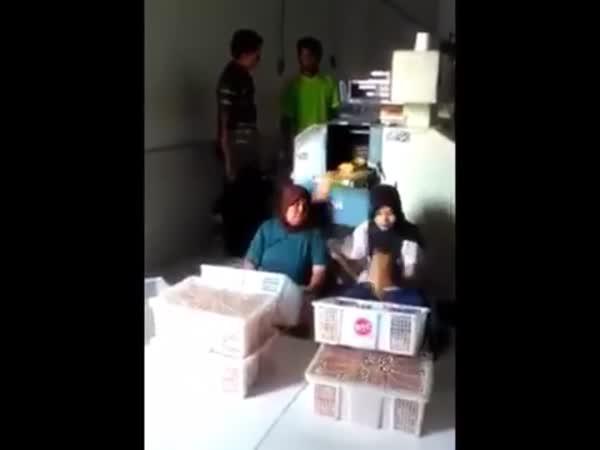 Efektivita práce - Holky balí krabice