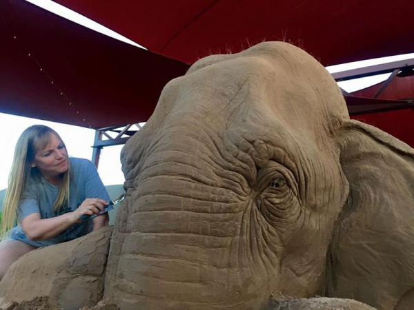 GALERIE - Slon z písku