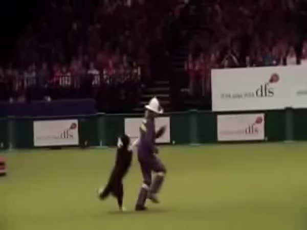 Tanec se psem