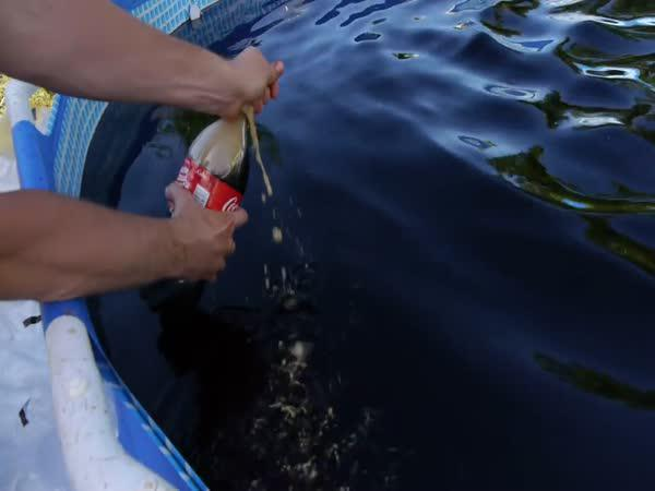 Bazén plný Coca Coly a mentosek