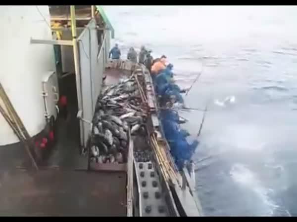 Hromadný rybolov