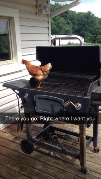 GALERIE - 20 nejstupidnějších věcí ze Snapchatu