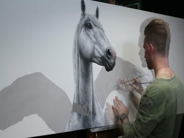 Jak namalovat reálného koně