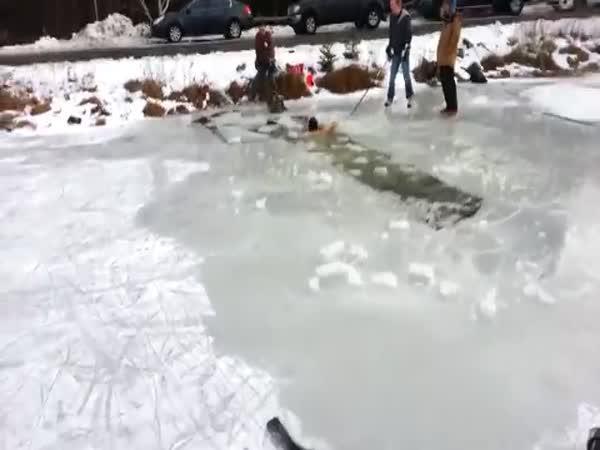 Největší blbci - Na sněhu a na ledě