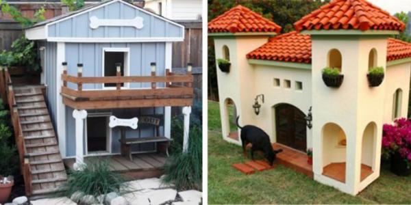 GALERIE - Úžasné psí boudy #1