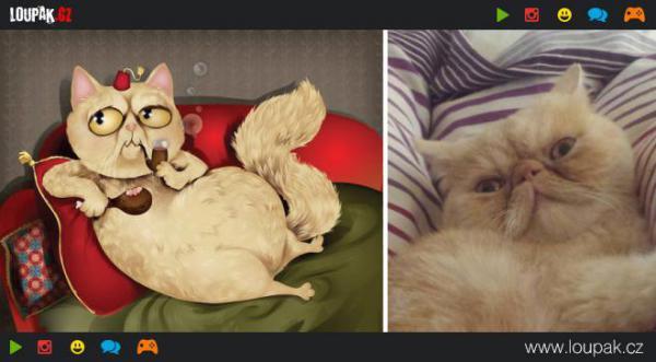 GALERIE - Vtipné kresby mazlíčků