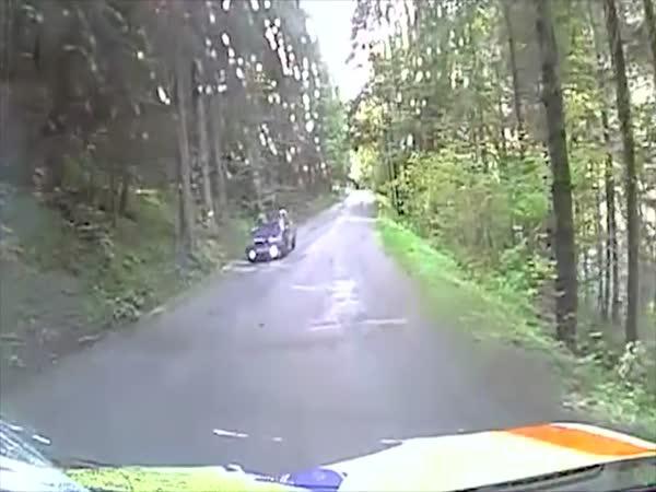 Česká republika - Sanitka vs. jelen