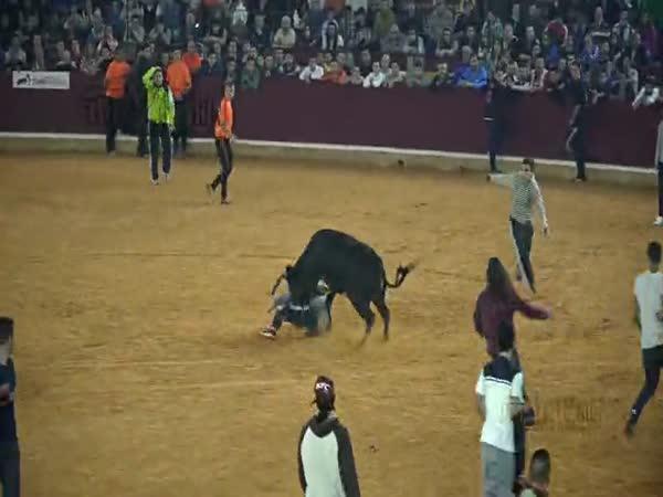 Býčí aréna - Zaragoza 2015
