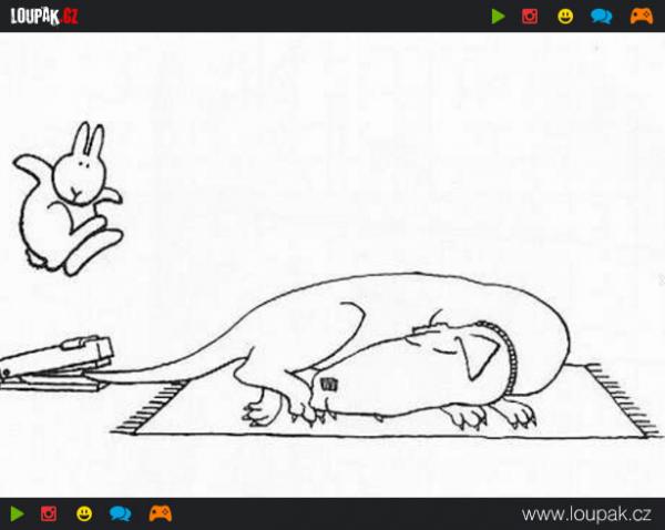 GALERIE - Sebevražedný králíček 1