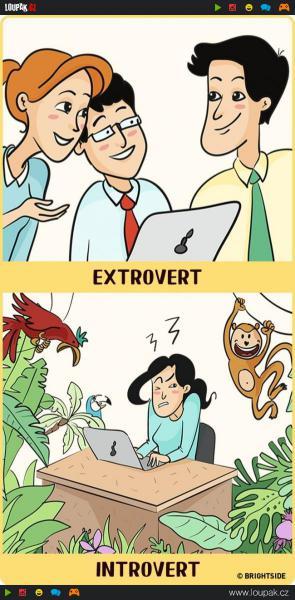 GALERIE - Extrovert vs. introvert