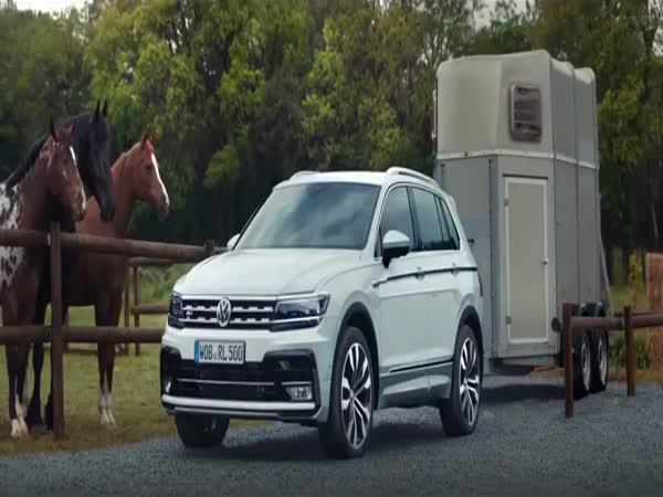 Reklama - Když se ti koně smějí