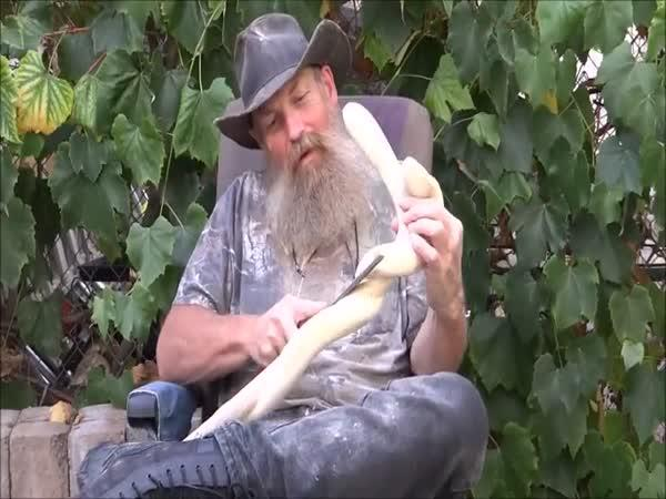 Borec - Řezbář vyřezává hada