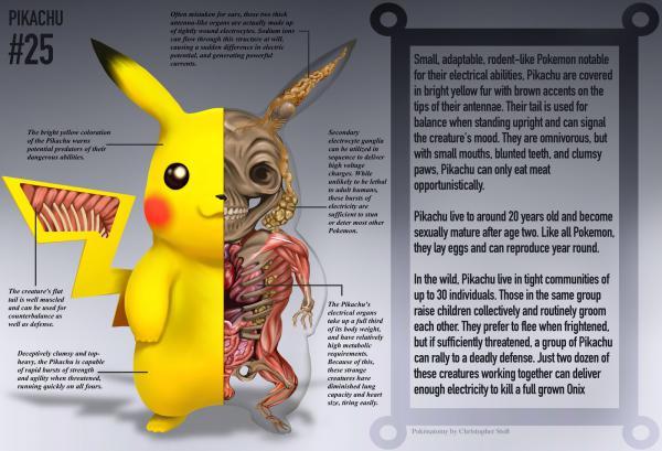 GALERIE - Pokémoni zevnitř 1