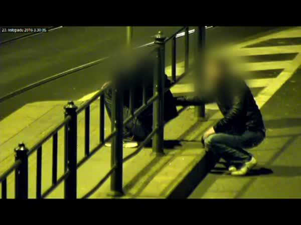 Česká republika - Zloděj vs opilý mladík