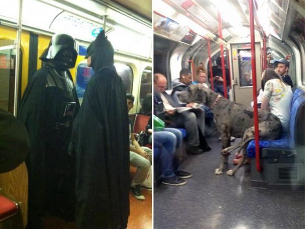 GALERIE - Co vše můžete potkat v metru
