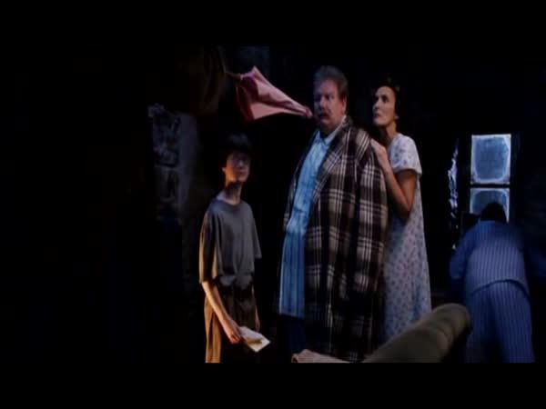 [PARODIE] Harry Potter - Vánoční dárek