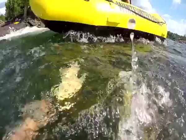 Žralok zaútočil na potápěče
