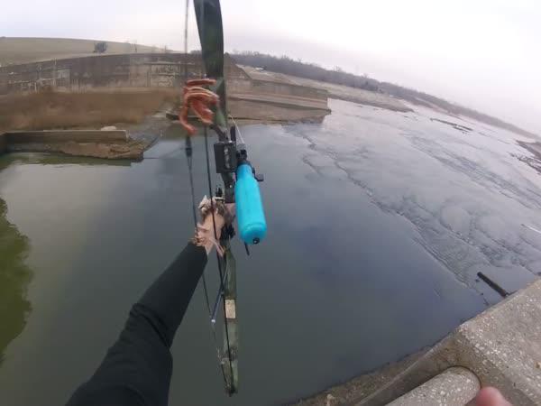 Na rybolovu s lukem