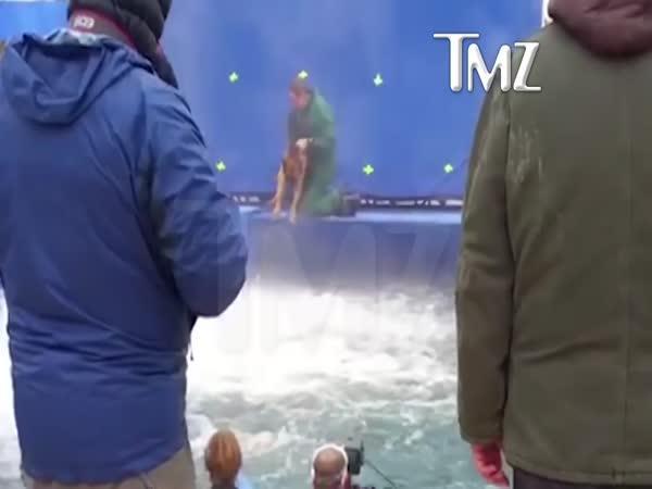 Týrání psa ve filmu