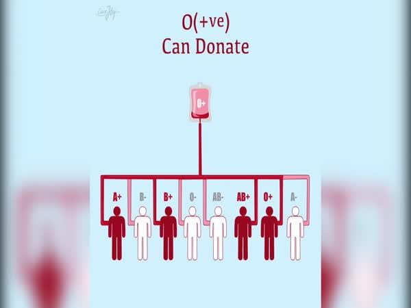 Kdo komu může darovat krev