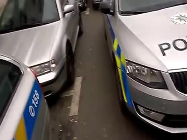ČR - Nespokojenost s parkováním PČR