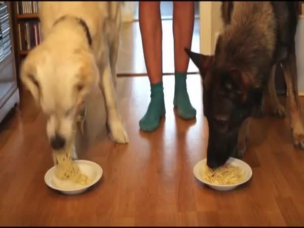 Velká špagetová soutěž