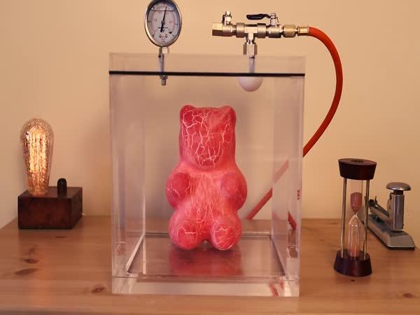 Velký gumový medvěd ve vakuové komoře