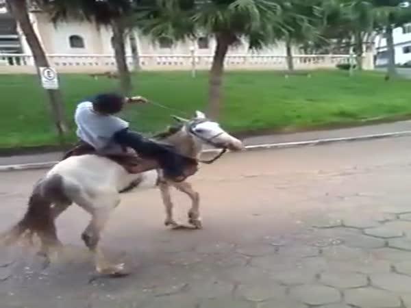 Opilec na koni