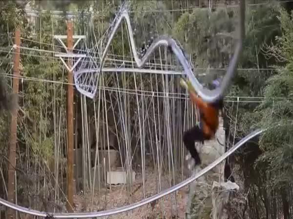 Adrenalinová lanovka
