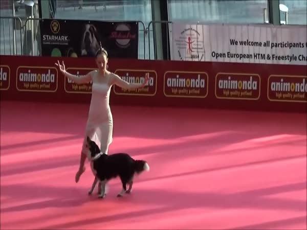 Úžasné představení psa a jeho paničky