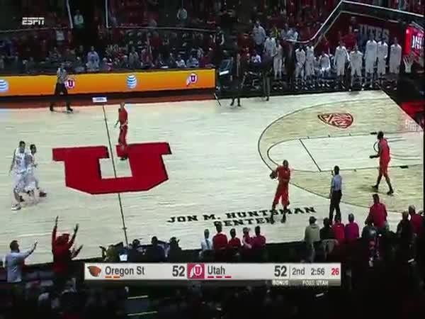 Basketbal – Podkopnutí rozhodčího