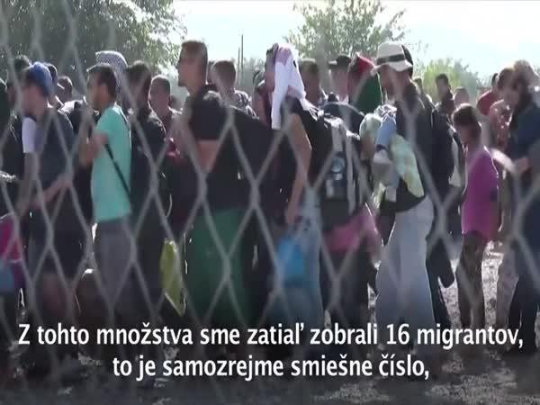 Slovensko a uprchlická krize