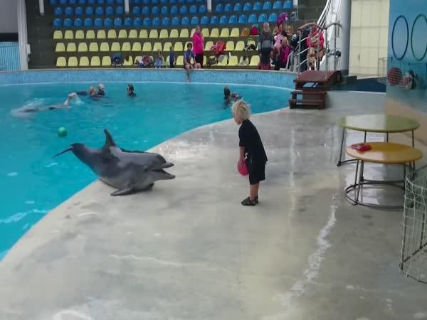 Chlapec si našel neobvyklého kamaráda