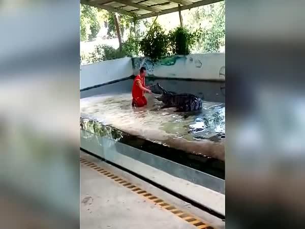 Krokodýl se zahryzl muži do hlavy