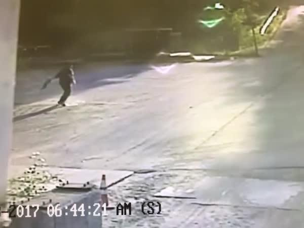 Řidič kamionu vs. liška