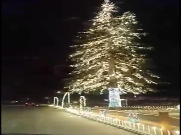 Úžasně osvětlený vánoční strom