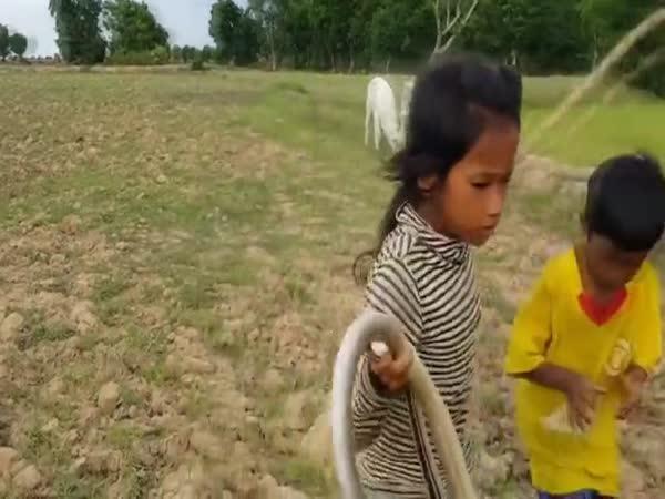 Když děti loví hady