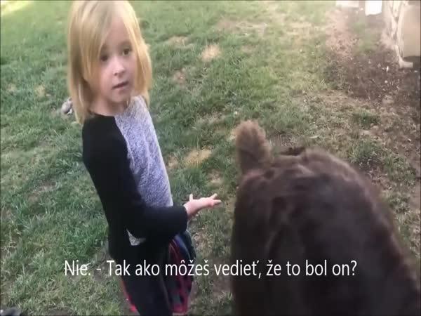 Můj pejsek je nevinný!