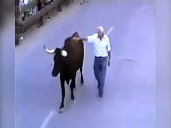 Rozloučení s býkem