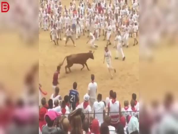 Býk vs. salto vpřed