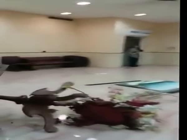 Destrukce nemocnice