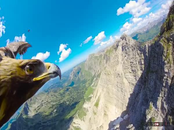 Hory z pohledu orla skalního