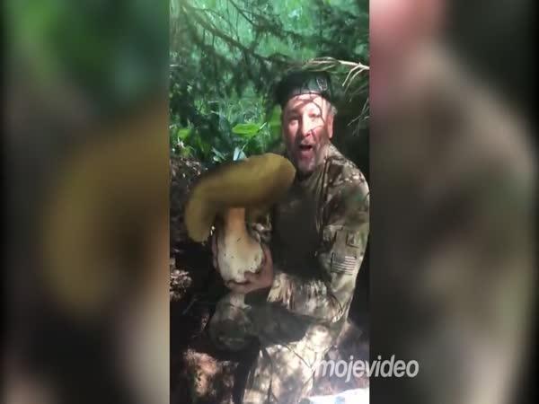 Chlapík našel rekordní hřib dubový