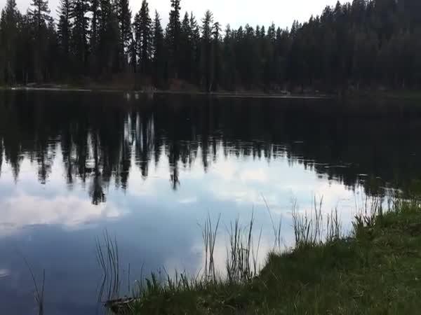 Tanec na jezeře