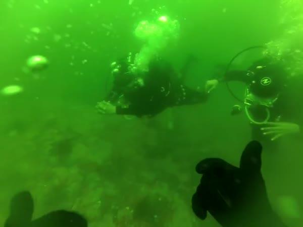 Panika pod vodou