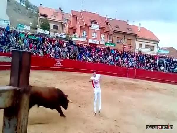 Člověk vs. býk #57