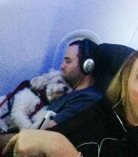 GALERIE - Mazlíčci v letadle #3