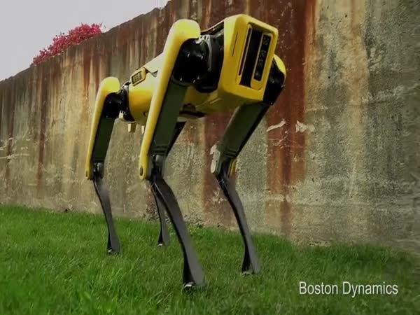 Robopes pro všechny