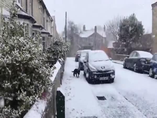 Poprvé uviděl sníh
