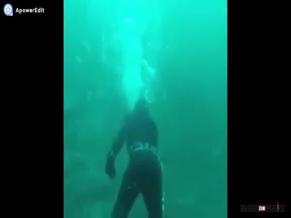 Setkání se žralokem #22